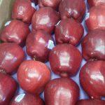 Manzana  roja calibre 105