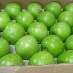 Manzana verde calibre 88